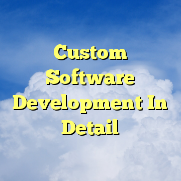 Custom Software Development In Detail